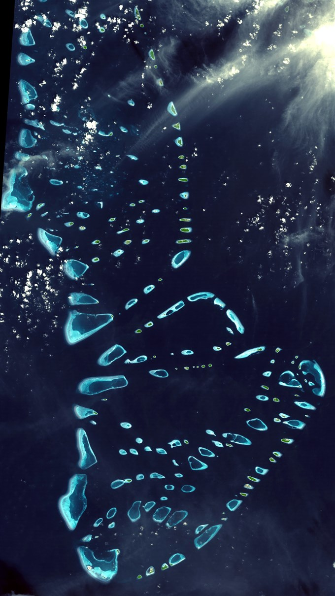 Reef in Maldives