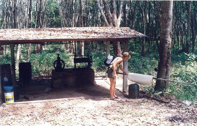 Mia in 2003 in Thailand inspecting how a rubber tree is tapped