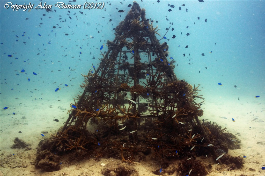 Scuba Diving Photo in Aow Leuk Bay in Thailand