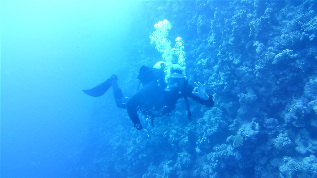 Dahab Days Diving Center .'s photo  in Egypt