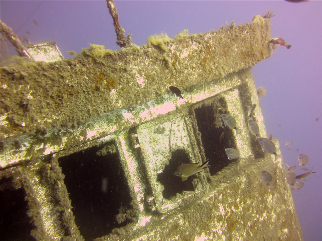 Scuba Diving Photo in El Raton in Spain