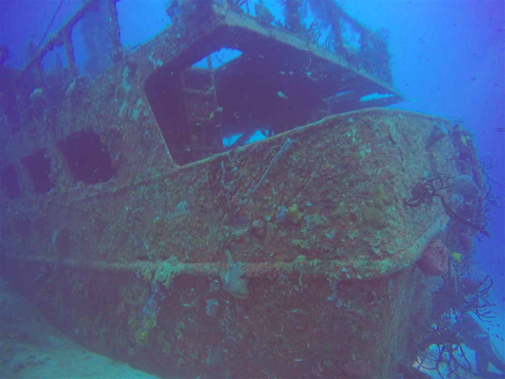 Pluto Dive's photo in MAMA VIÑA WRECK  in Mexico