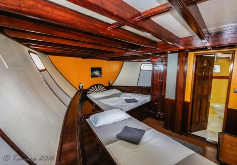 Standard Lower Deck Cabin