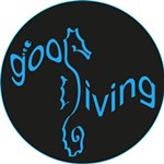 GooDiving Dive center