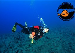 Scuba diving in Montana Guaza - secret place in Spain