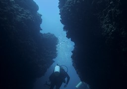 Scuba diving in Oganim - (in English - the Anchors) in Israel