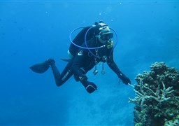 Scuba diving in Ron's Point in Indonesia