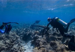Scuba diving in The Brothers in Egypt