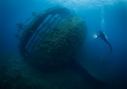 Scuba diving in Umbria Wreck  in Sudan