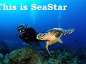 Scuba diving photo by SEA STAR WATERSPORTS