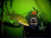 Scuba diving photo by Waterman Dive Center