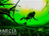 Scuba diving photo by ADVANCED DIVER MEXICO