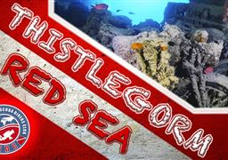 Scuba diving in Thistlegorm Wreck in Egypt